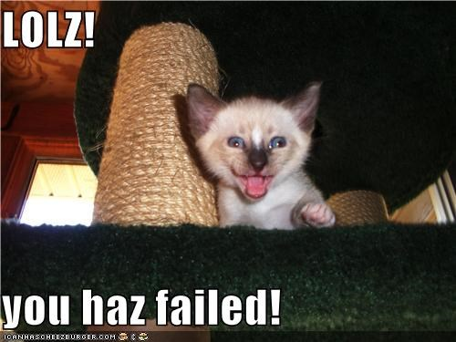 cat,FAIL,I Can Has Cheezburger,judging you,laughing,laughing at you,lol