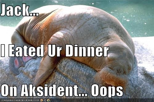 Jack... I Eated Ur Dinner On Aksident... Oops