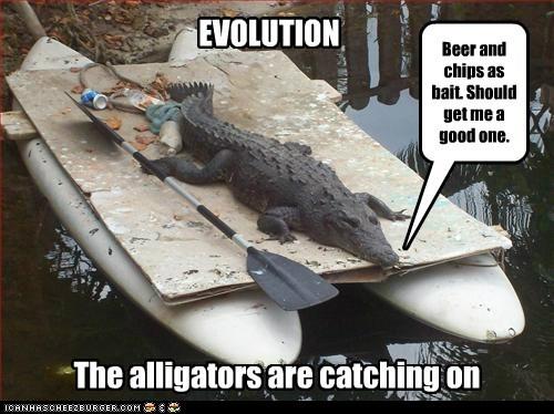 alligators,animals,beer,boat,chips,evolution,hunting for humans,paddle