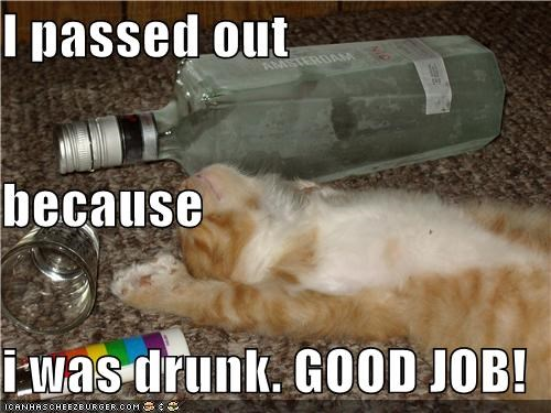 I passed out because i was drunk. GOOD JOB!