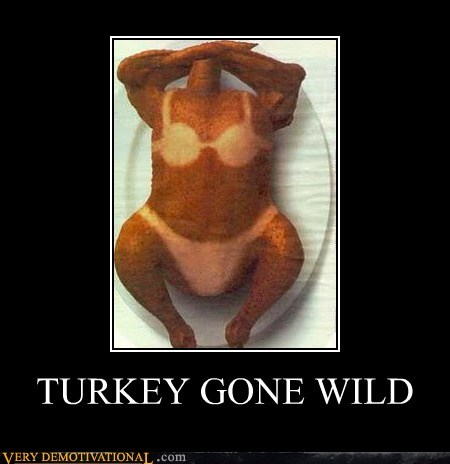 TURKEY GONE WILD