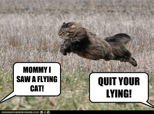 MOMMY I SAW A FLYING CAT!