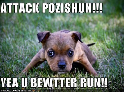 ATTACK POZISHUN!!!  YEA U BEWTTER RUN!!
