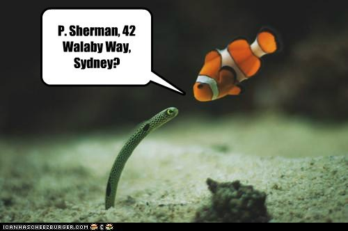 P. Sherman, 42 Walaby Way, Sydney?