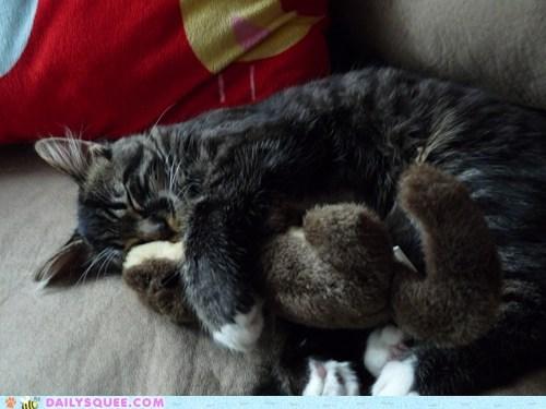 Fern Huggles His Otter