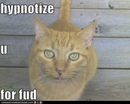 hypnotize u for fud