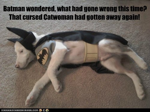 Batman wondered, what had gone wrong this time? That cursed Catwoman had gotten away again!