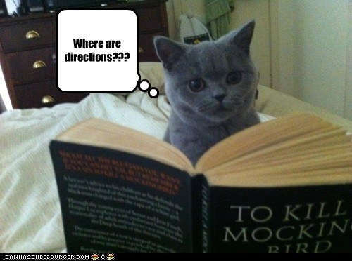 A book every cat should own...