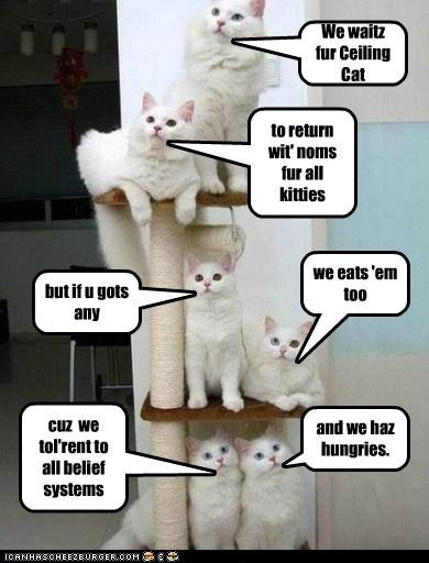 We waitz fur Ceiling Cat