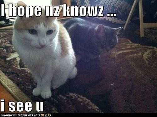 I hope uz knowz ...  i see u