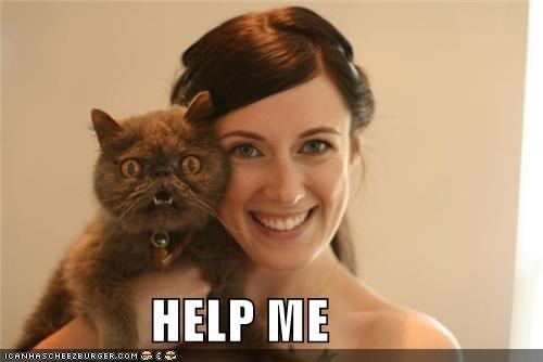 caption,captioned,cat,do not want,expression,help,help me,human,Photo,posing,terror