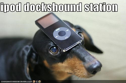 ipod dockshound station