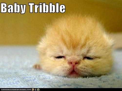 Baby Tribble