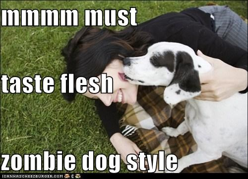 mmmm must  taste flesh zombie dog style