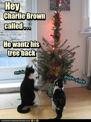 Oh Christmas tree !