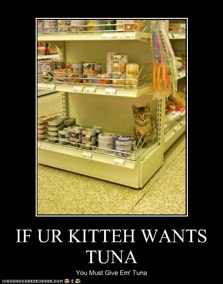IF UR KITTEH WANTS TUNA