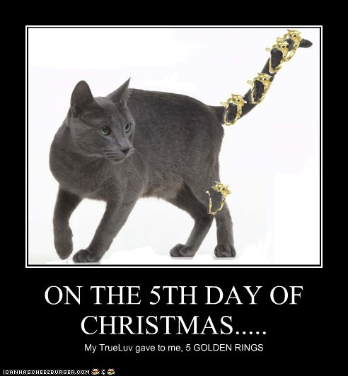 ON THE 5TH DAY OF CHRISTMAS.....