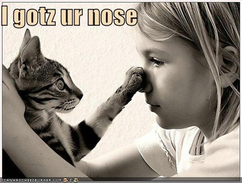 I gotz ur nose