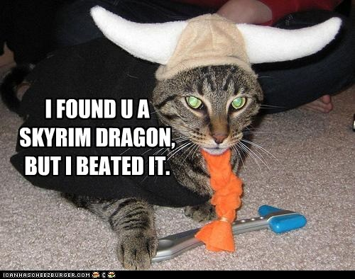 beat,but,but i eeted it,caption,captioned,cat,costume,dragon,dressed up,found,I,meme,pun,Skyrim,viking,you