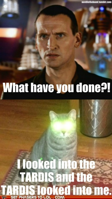 bad wolf,Cats,christopher eccleston,doctor who,lazer eyes,tardis,the doctor