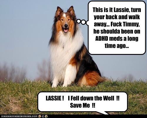 LASSIE !    I Fell down the Well  !! Save Me  !!