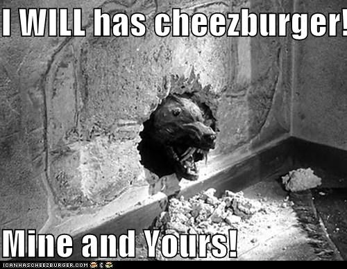 cheezburger,I Can Has Cheezburger,mine,the killer shrews,yours