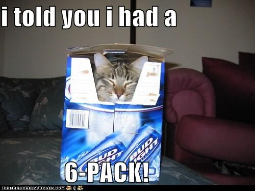 i told you i had a  6-PACK!