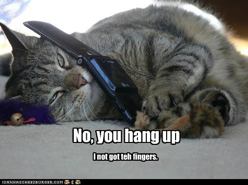 caption,captioned,cat,cell phone,do not,fingers,hang,hang up,have,no,not,phone,reason,up,you