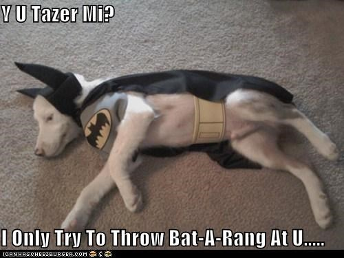 Y U Tazer Mi?  I Only Try To Throw Bat-A-Rang At U.....