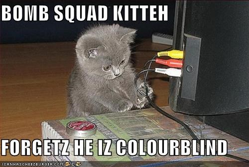 BOMB SQUAD KITTEH  FORGETZ HE IZ COLOURBLIND