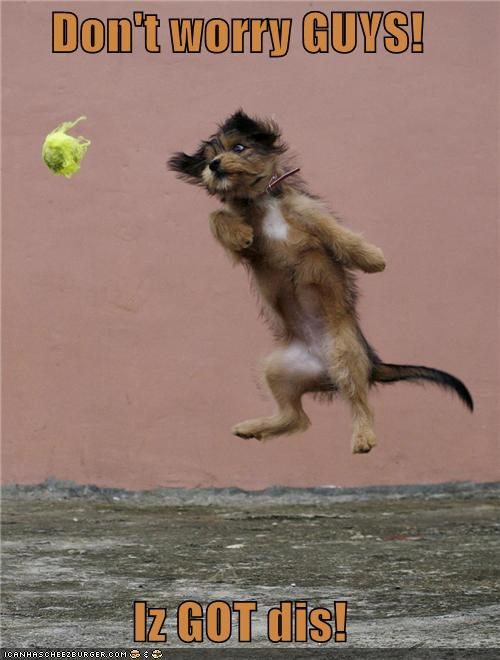 Don't worry GUYS!  Iz GOT dis!