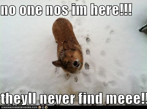 no one nos im here!!!  theyll never find meee!!