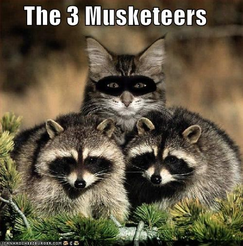 The 3 Musketeers