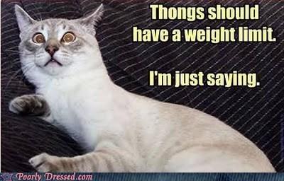 just saying,thongs weight limit,warn people,warning cat