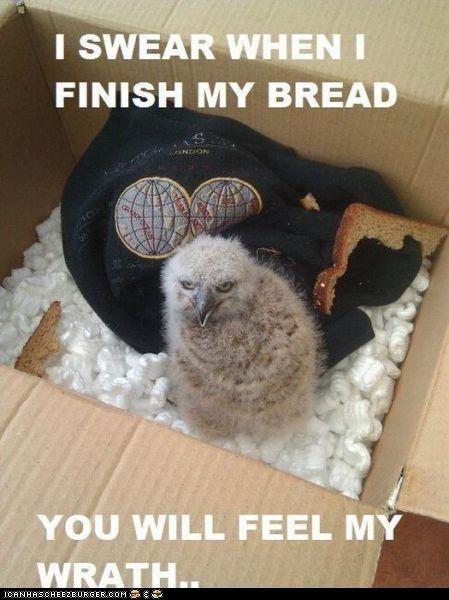 Just Wait Till I Finish My Bread