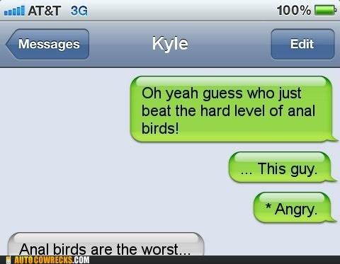 anal birds,angry birds,auto correct,game