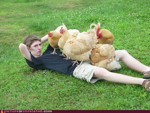 The Chicks Are All Over Me
