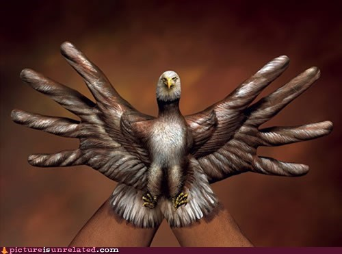My Hands Are an Eagle. Your Argument Is Invalid