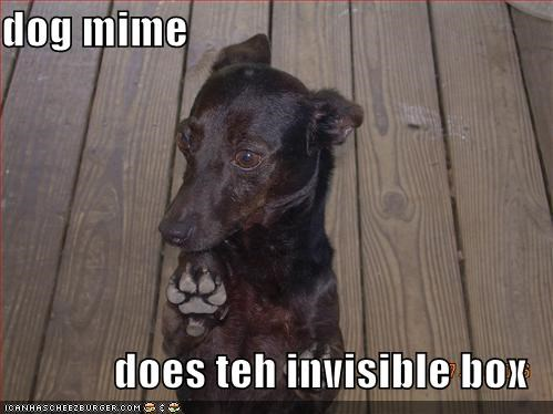 dog mime  does teh invisible box