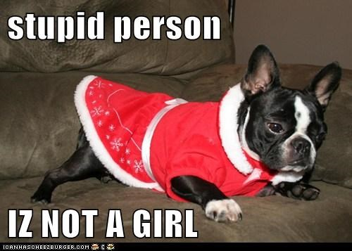 stupid person  IZ NOT A GIRL