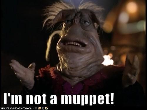 I'm not a muppet!