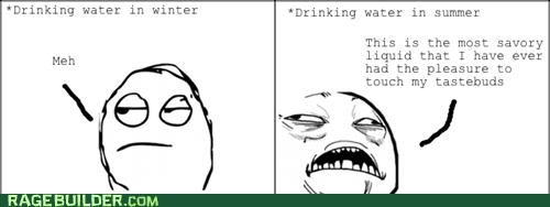 Rage Comics,summer,water,winter
