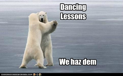 animals,dancing,dancing lessons,Music,polar bear,polar bears