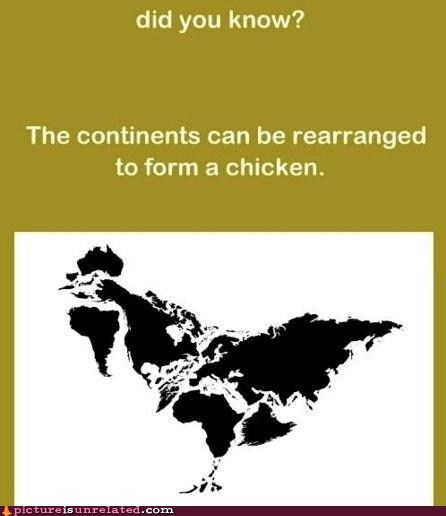 International Chicken