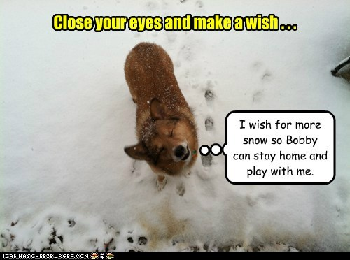 Close your eyes and make a wish . . .