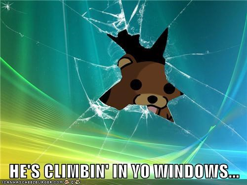 HE'S CLIMBIN' IN YO WINDOWS...