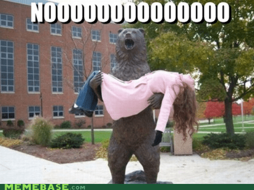 bear,darth vader,Memes,statue,tracy,whered-that-name-come-from