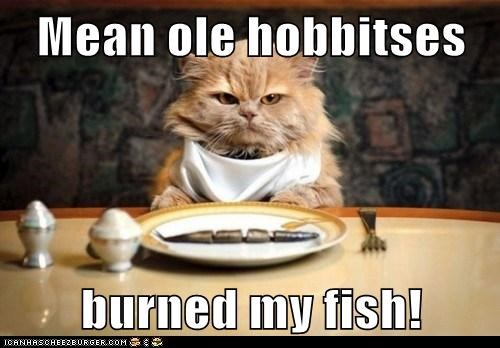 burned,caption,captioned,cat,dinner,do not want,fish,hobbits,Lord of the Rings,mean,noms,old,quote,Sméagol,unhappy