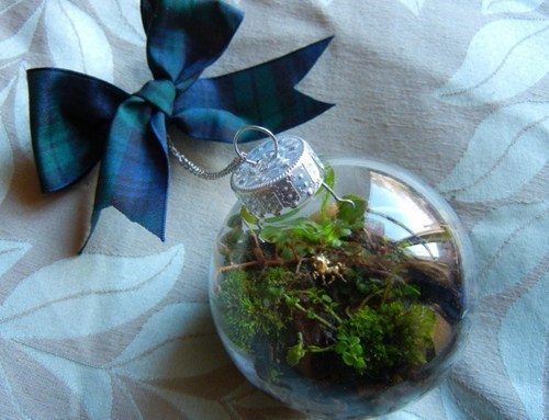 DIY Terrarium Christmas Ornament of the Day