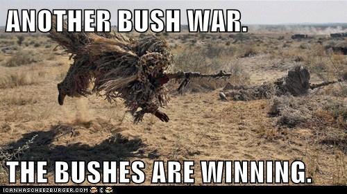 Another Bush War
